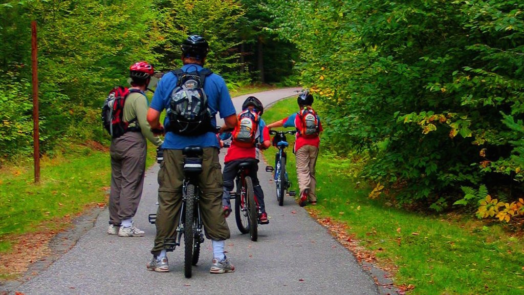 White Mountains showing forests, a garden and cycling