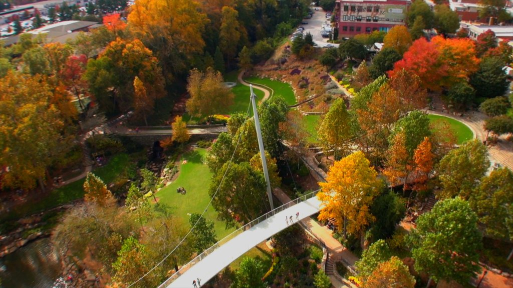 Greenville featuring autumn leaves, a garden and a bridge