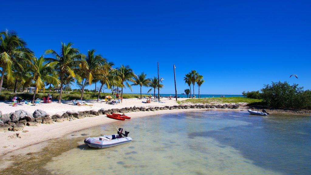 Marathon que incluye escenas tropicales, una bahía o puerto y una playa