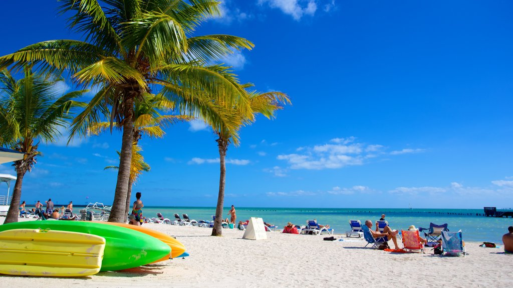 Higgs Beach showing a sandy beach and tropical scenes as well as a large group of people