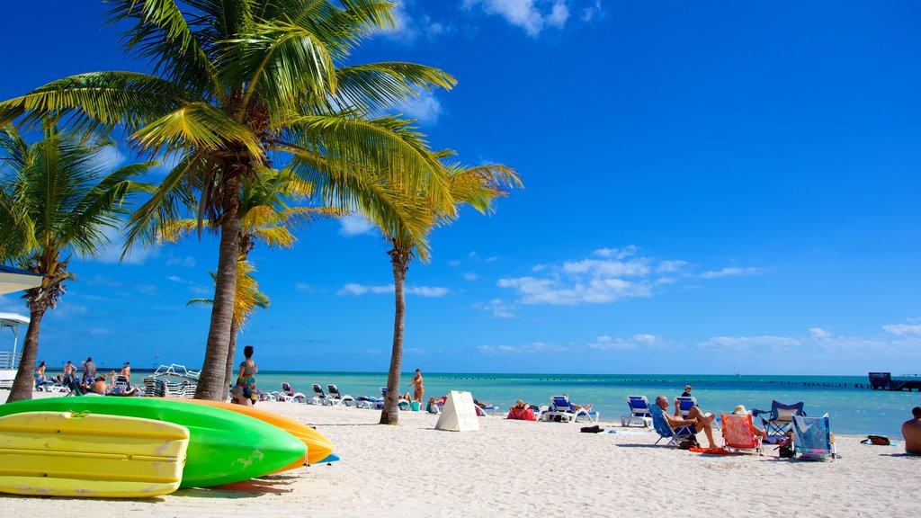 Playa de Higgs ofreciendo escenas tropicales y una playa y también un gran grupo de personas