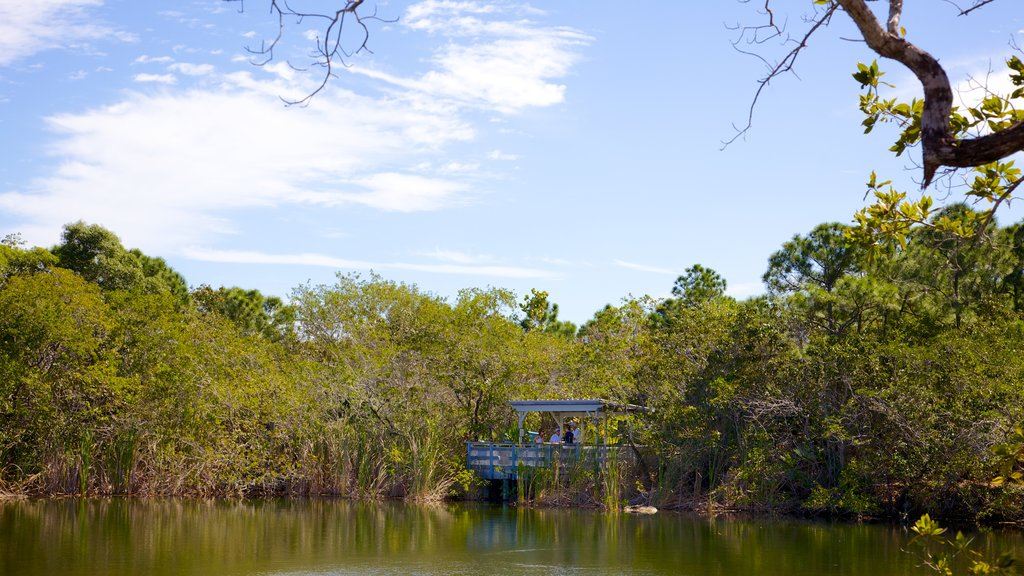 Big Pine Key which includes views, a lake or waterhole and mangroves