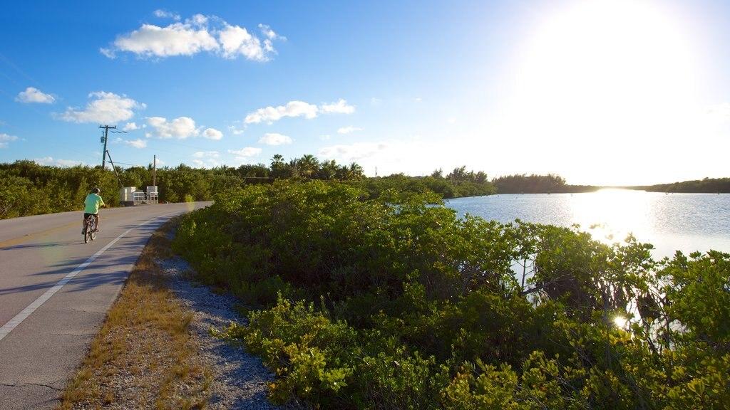 Big Pine Key featuring cycling and general coastal views