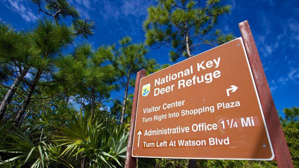 Big Pine Key showing signage and general coastal views