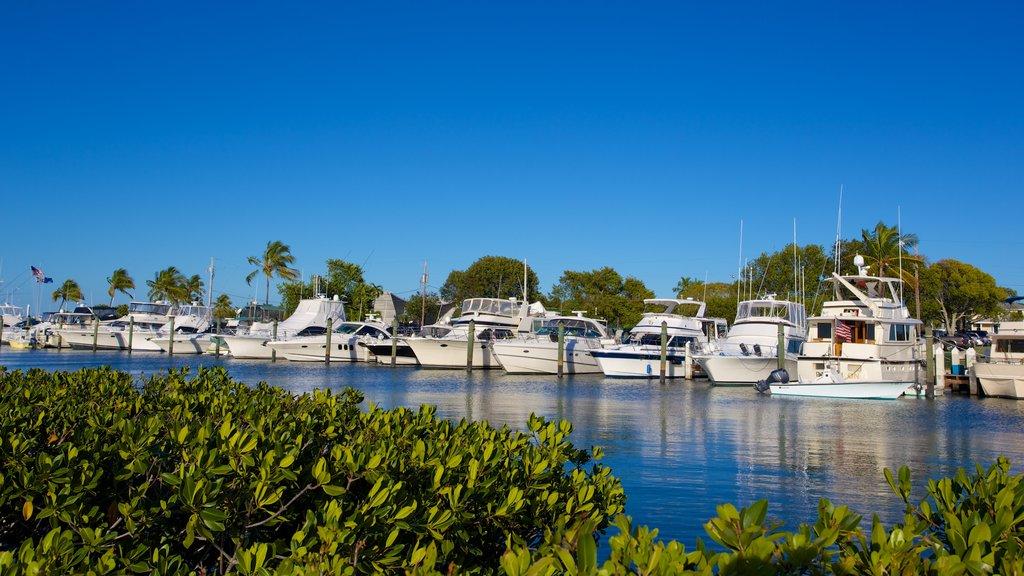 Islamorada featuring mangroves, general coastal views and a marina