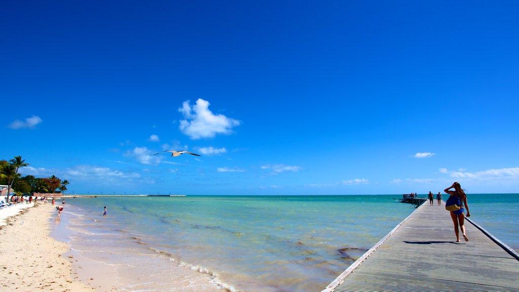 Playa de Higgs que incluye vistas de paisajes, una playa y vistas