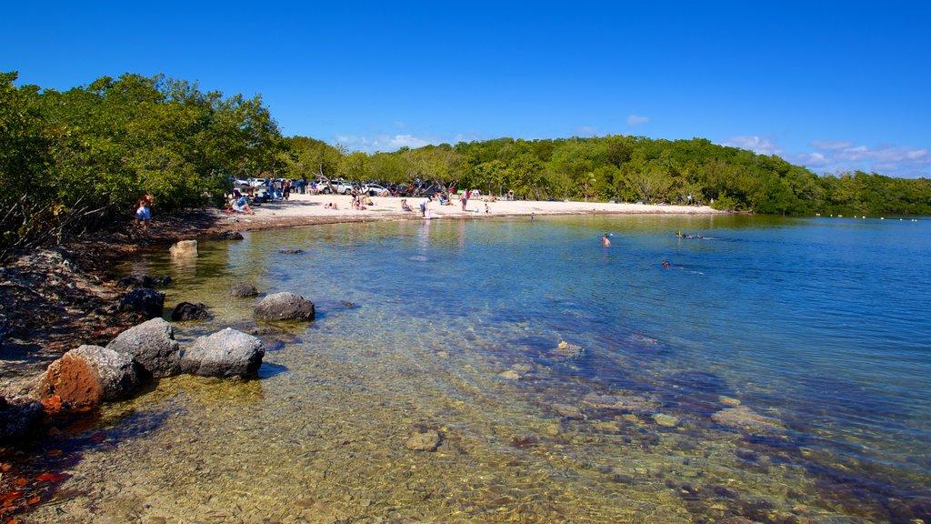 John Pennekamp Coral Reef State Park showing a bay or harbor, rocky coastline and landscape views