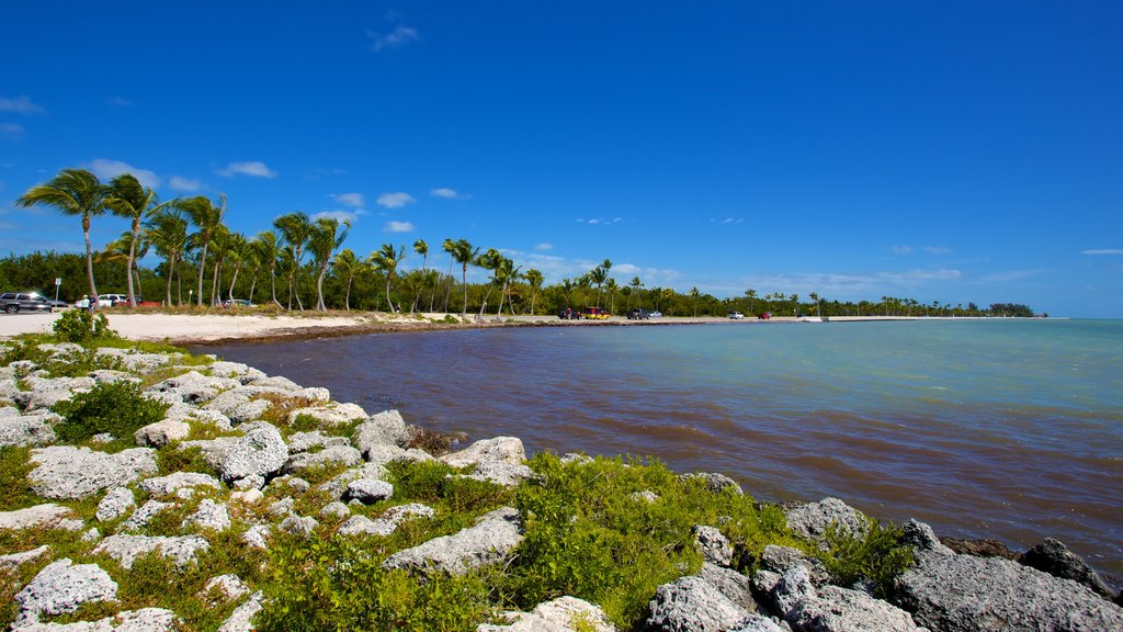 Smathers Beach which includes a beach, tropical scenes and rocky coastline