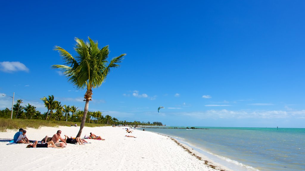 Smathers Beach featuring a beach and tropical scenes as well as a small group of people