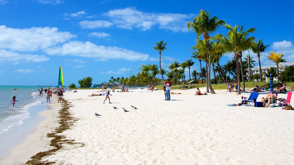 Smathers Beach which includes a beach and tropical scenes as well as a large group of people