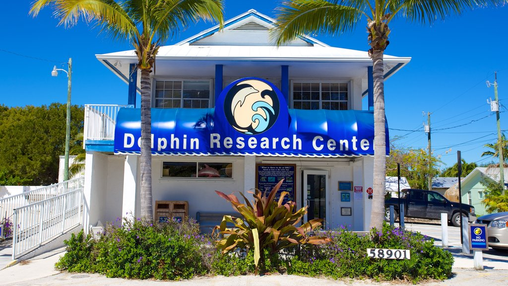Dolphin Research Center which includes signage