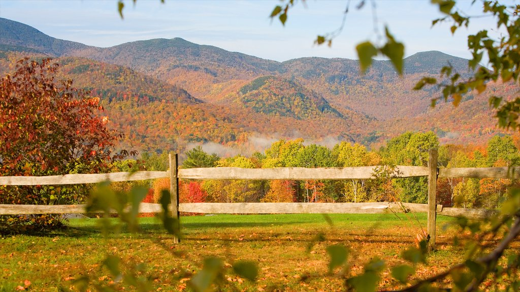 Vermont which includes fall colors, mountains and landscape views