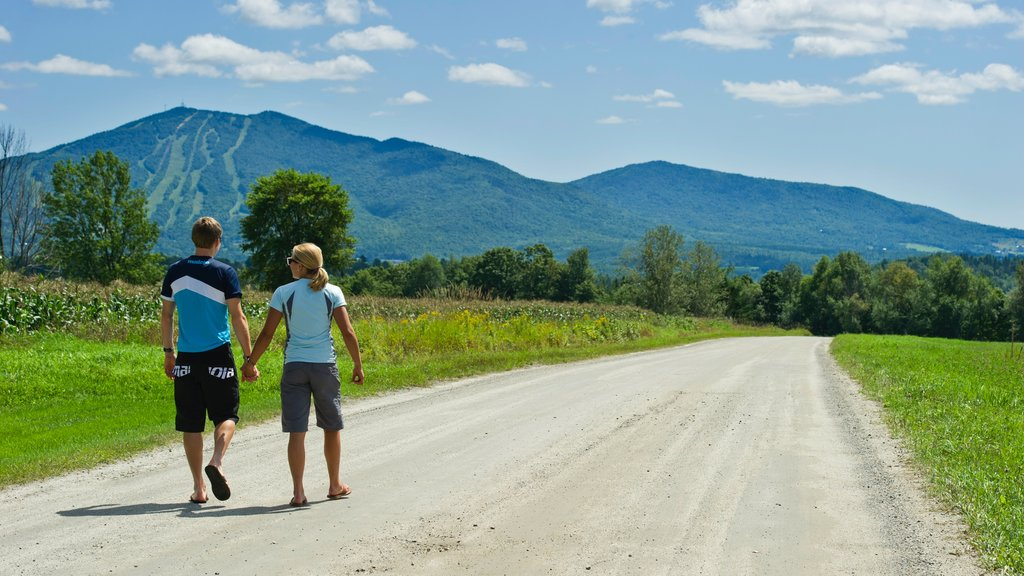 Vermont featuring tranquil scenes and hiking or walking as well as a couple