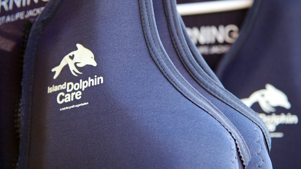 Dolphins Plus Bayside featuring signage