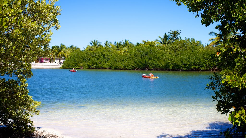Curry Hammock State Park showing a beach and kayaking or canoeing