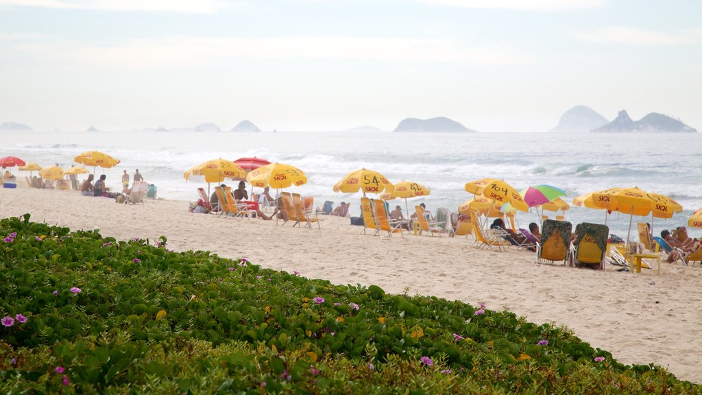 Barra da Tijuca showing a garden and a beach