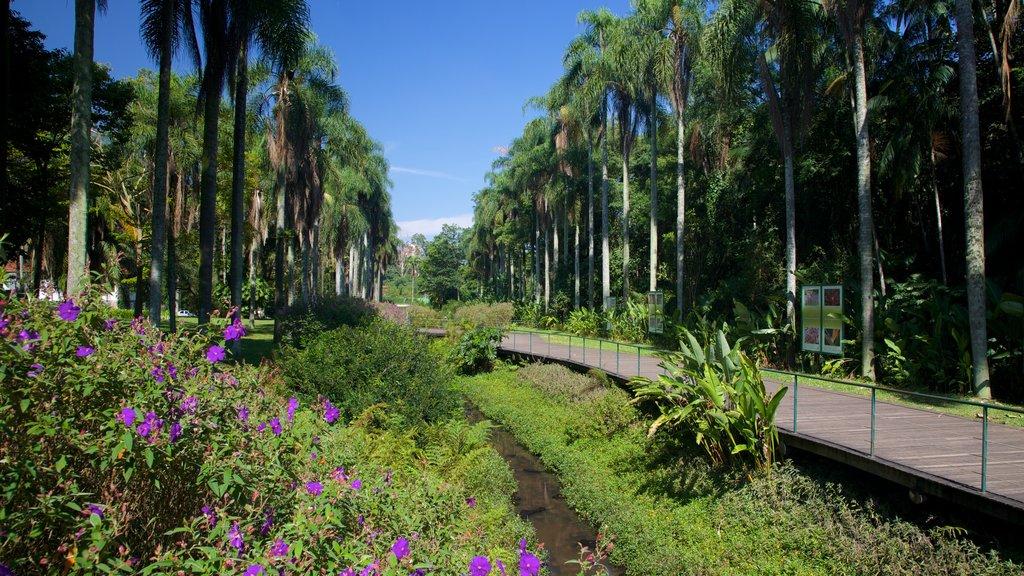 Jardim Botânico de São Paulo que inclui um parque