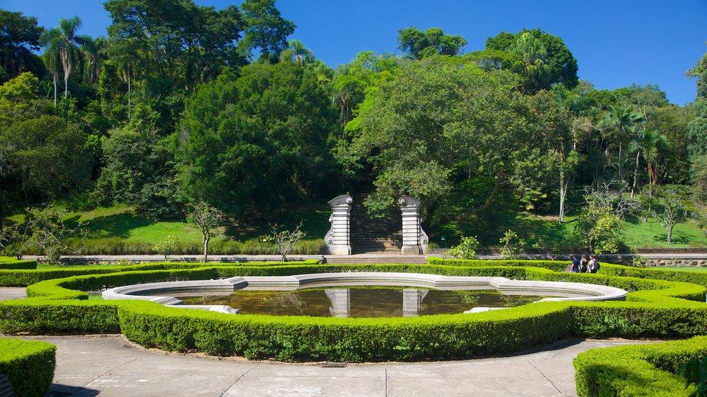Jardim Botânico de São Paulo que inclui um parque e um lago