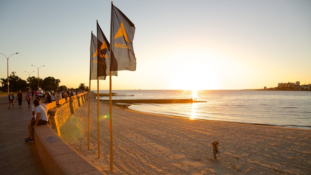 Montevideo showing a sunset and a sandy beach