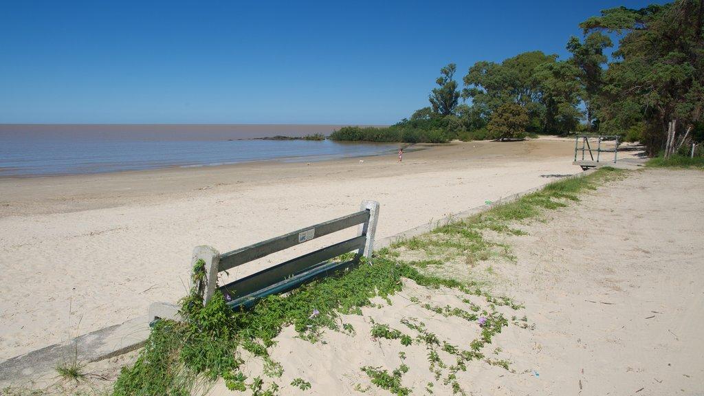 Colonia del Sacramento which includes a sandy beach