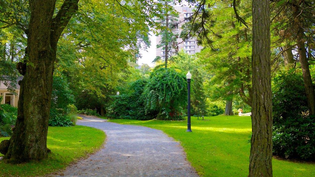 Halifax Public Gardens showing a garden