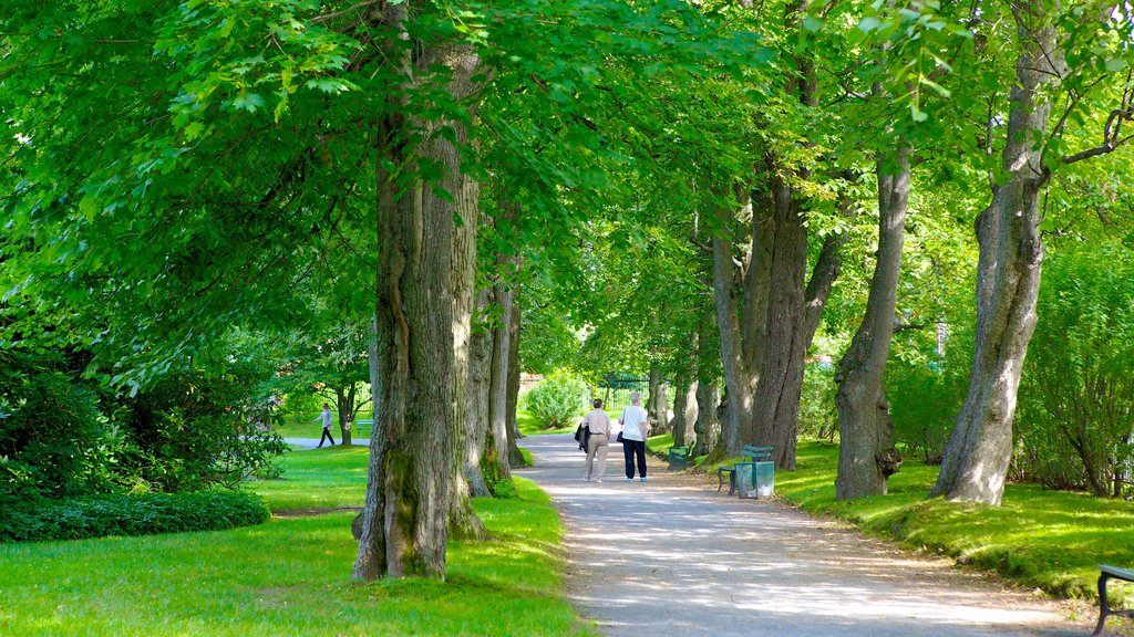 Halifax Public Gardens showing a park