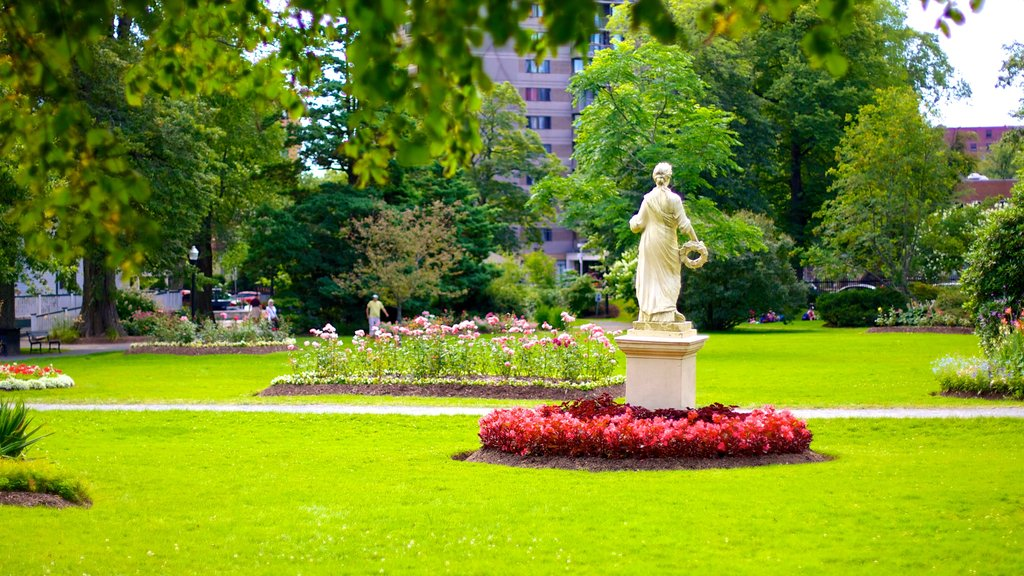 Halifax Public Gardens showing a park and a statue or sculpture
