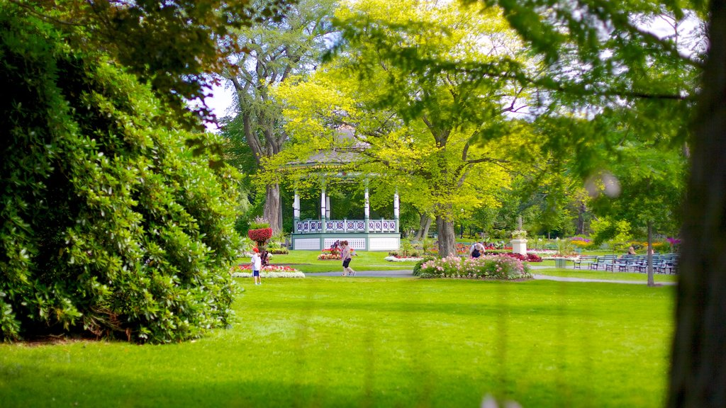 Halifax Public Gardens which includes a garden