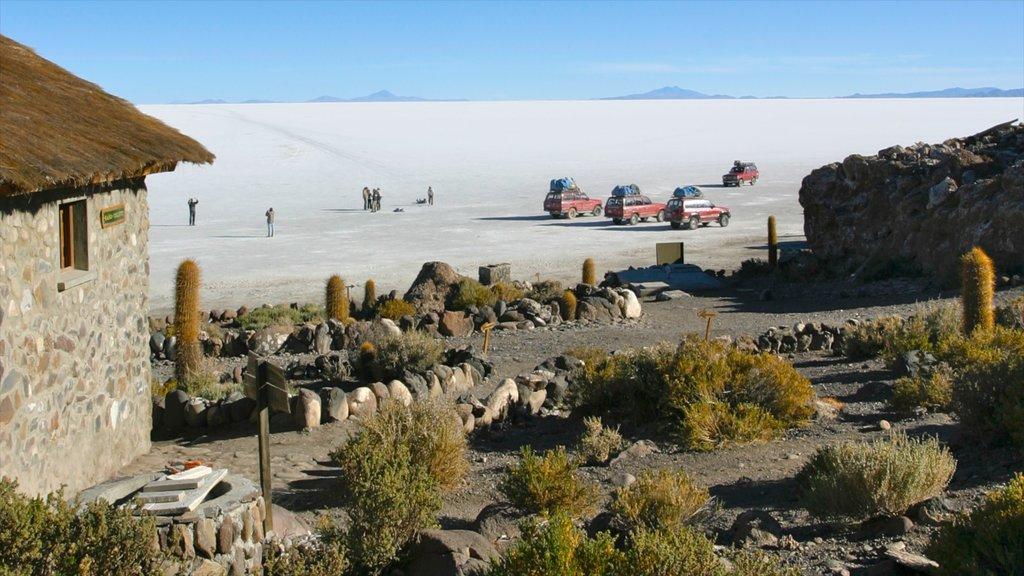 Salar de Uyuni featuring landscape views, desert views and a lake or waterhole