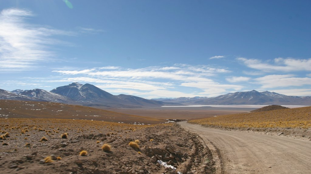 Bolivia featuring landscape views and desert views