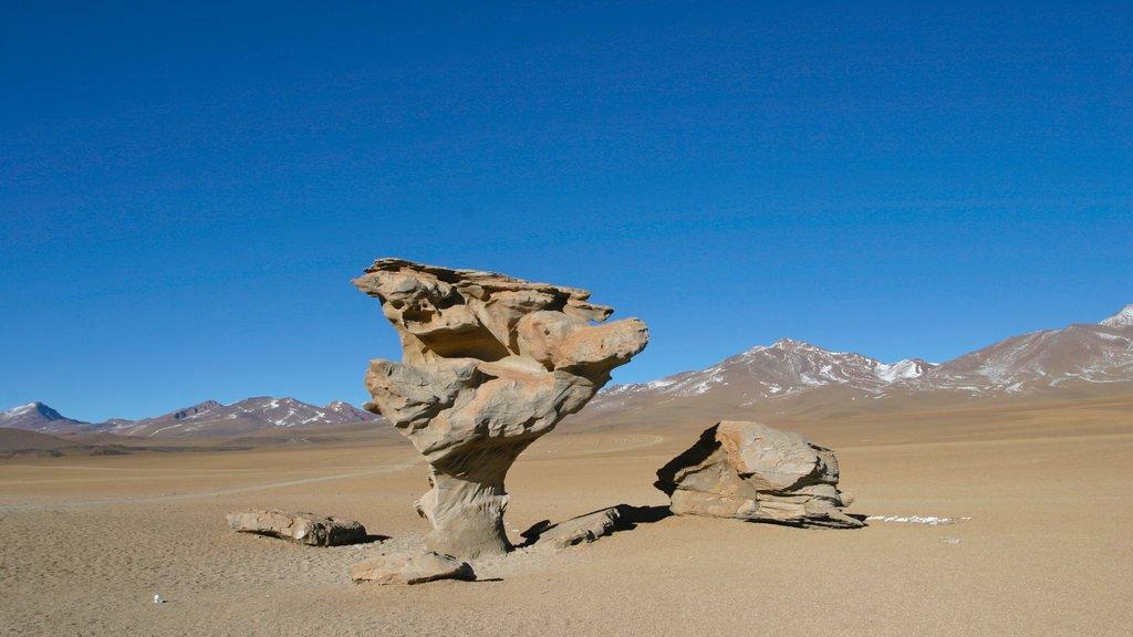 Bolivia showing desert views