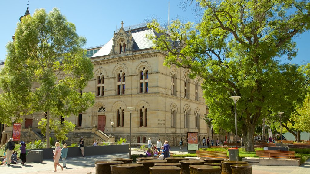South Australian Museum showing heritage architecture
