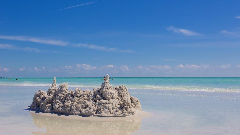 Siesta Key Public Beach featuring a beach