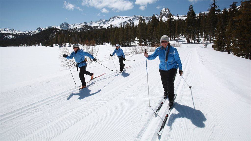 Central Interior California featuring cross country skiing and snow as well as a small group of people