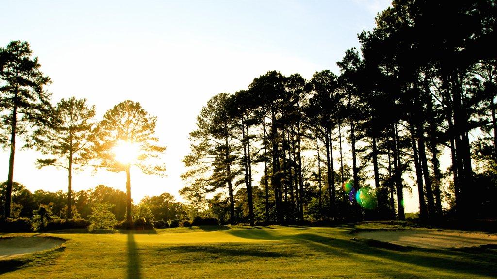 Fayetteville ofreciendo una puesta de sol, un parque y golf