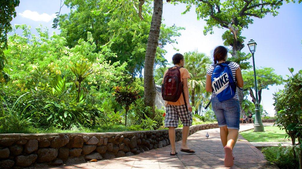 Parc Bougainville mostrando un jardín y también una pareja