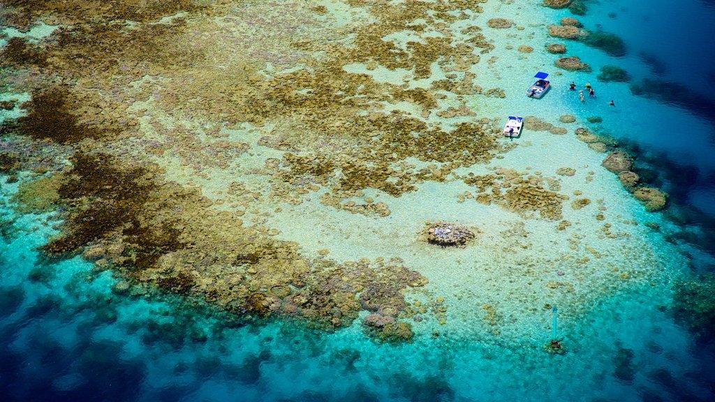 Tahití ofreciendo imágenes de una isla y arrecifes coloridos