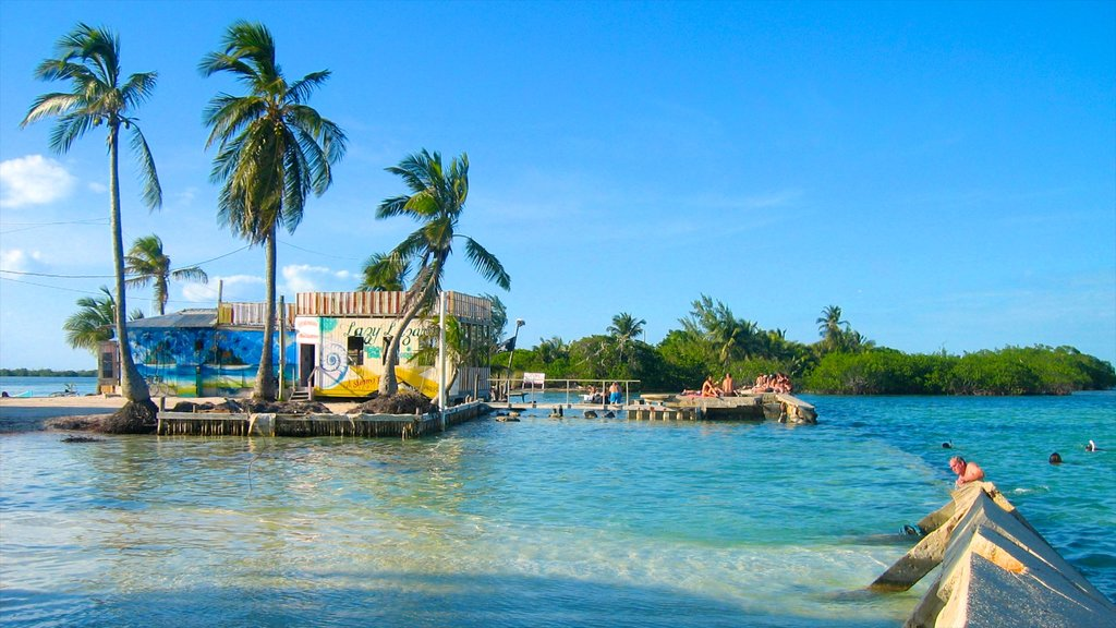 Caye Caulker showing tropical scenes and general coastal views