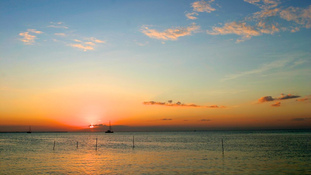 Caye Caulker showing general coastal views and a sunset
