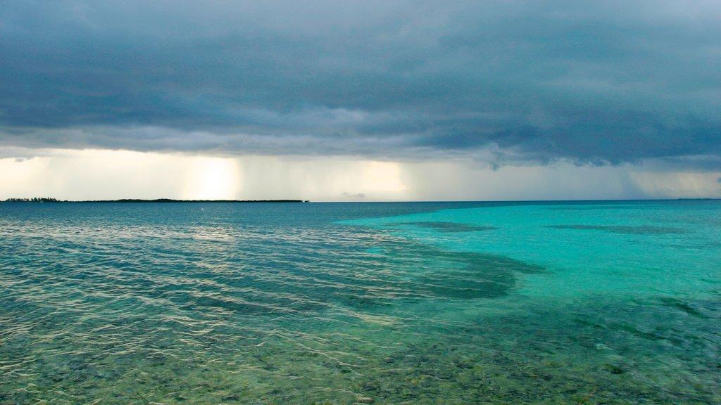 Cayo Tabaco que incluye vistas generales de la costa