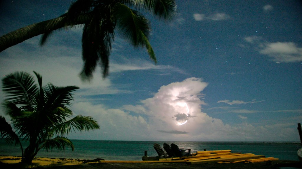 Tobacco Caye which includes tropical scenes, night scenes and general coastal views