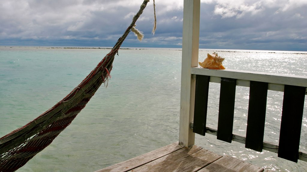 Tobacco Caye featuring general coastal views