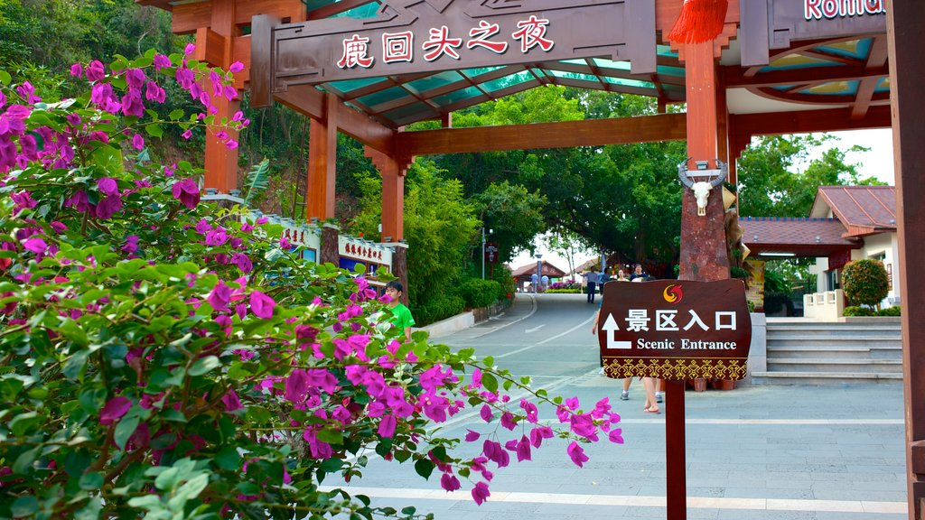 Luhuitou Park showing signage and flowers