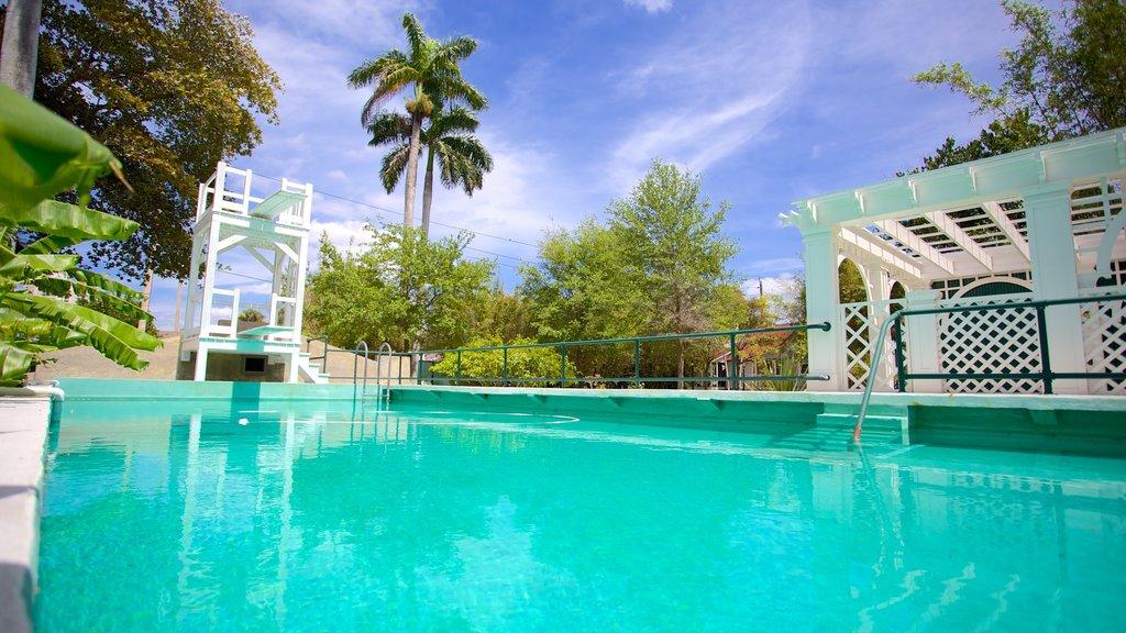 Fort Myers mostrando una alberca