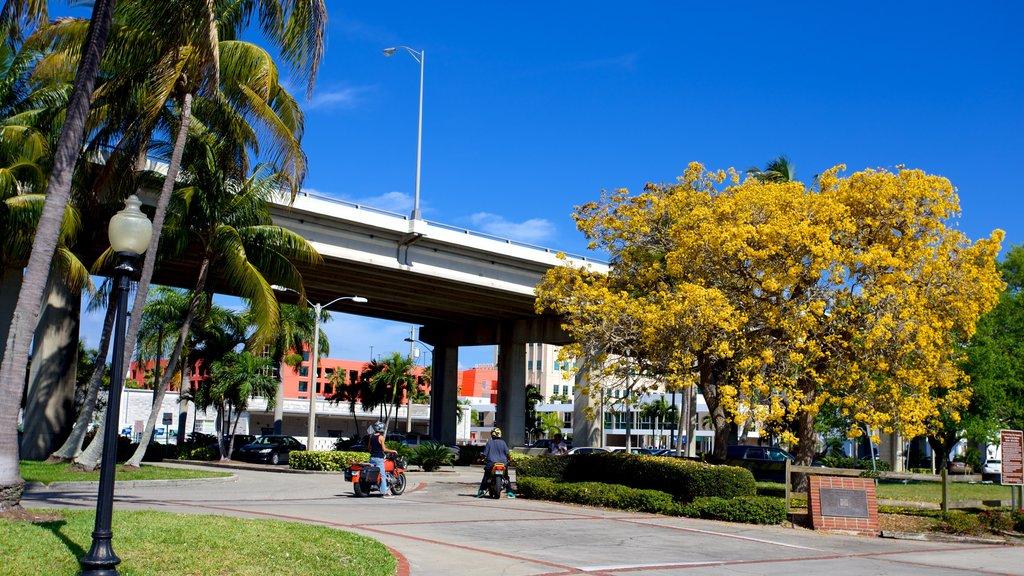 Centennial Park que incluye un parque