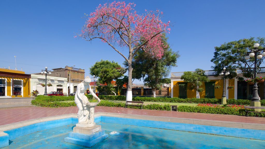 Barranco which includes art, a fountain and a city