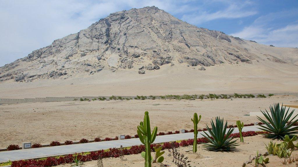Huaca de la Luna showing mountains, desert views and landscape views