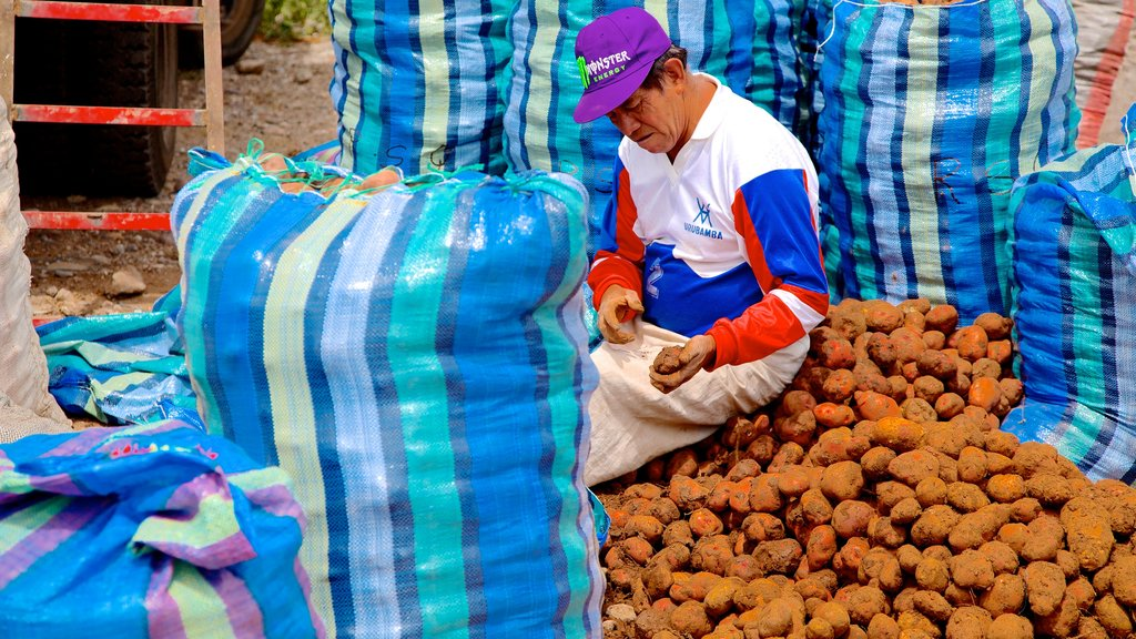 Urubamba which includes markets as well as an individual male