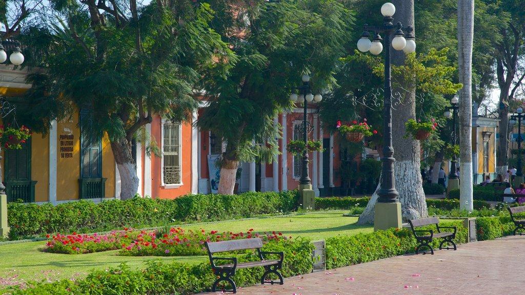 Barranco featuring a garden and street scenes