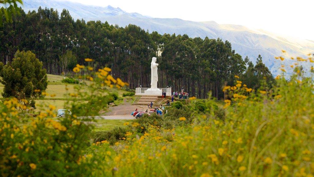 Sacsayhuamán que incluye flores